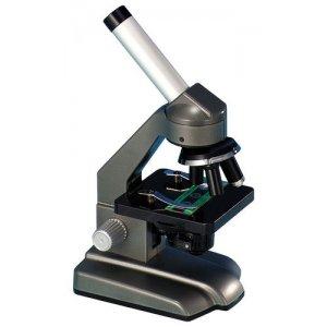 Microscopio 640
